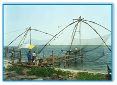 Fishing Net, Cochin Travel Packages